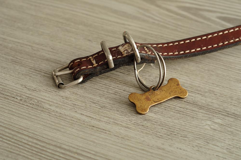 Eco-friendly Dog Collar