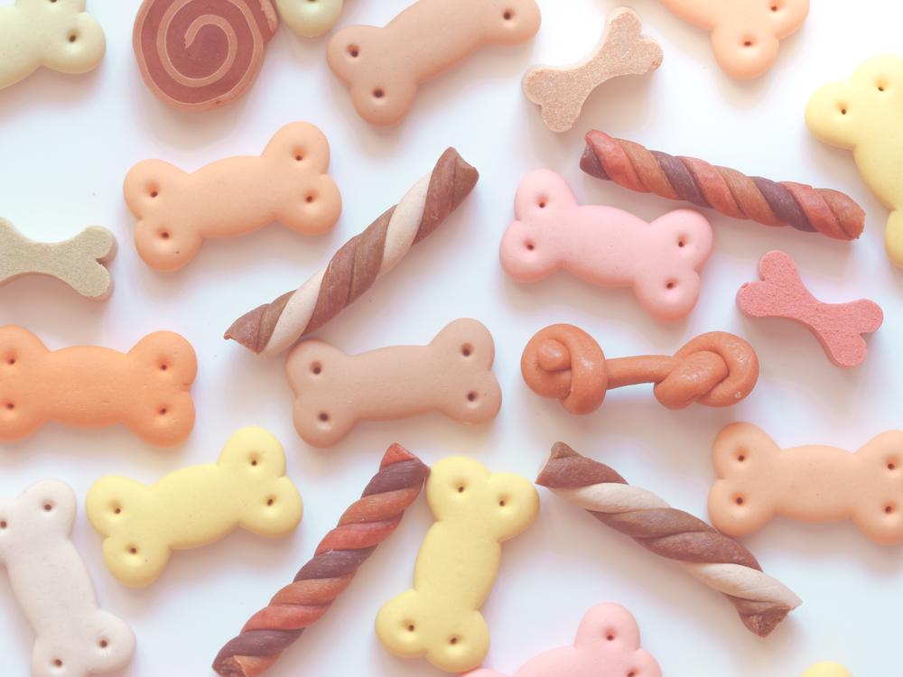 Soft Chews for Cats